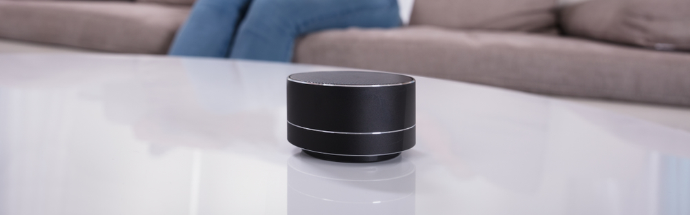 voice assistant device